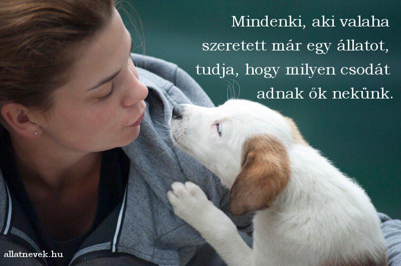 állat szeretet idézet