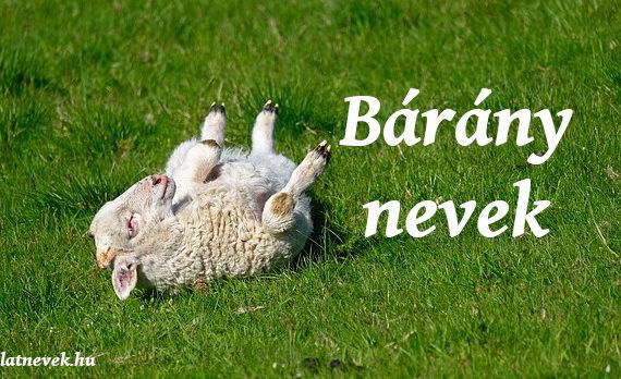 bárány nevek