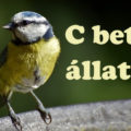 c betűs állatok