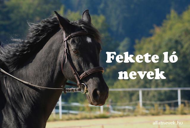 fekete ló nevek