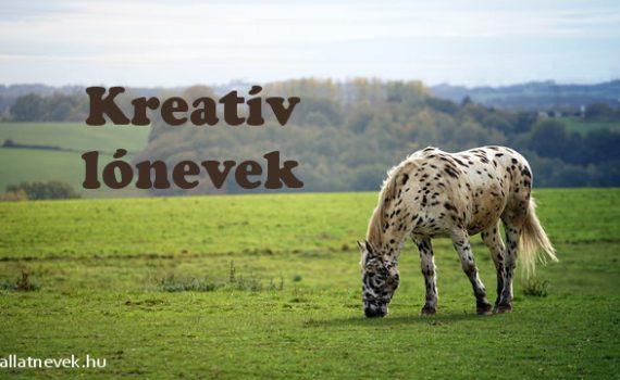 kreatív lónevek