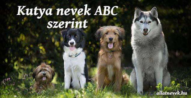 kutya nevek abc szerint