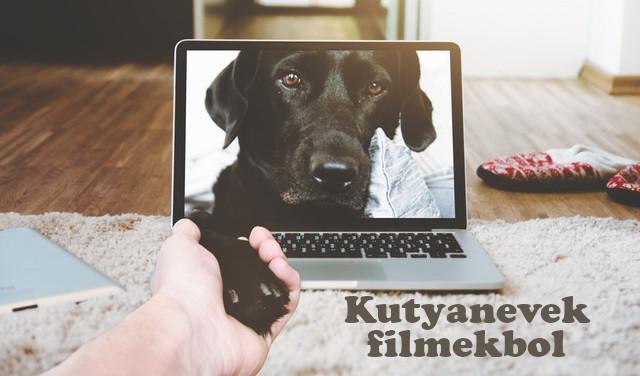 kutyanevek filmekből
