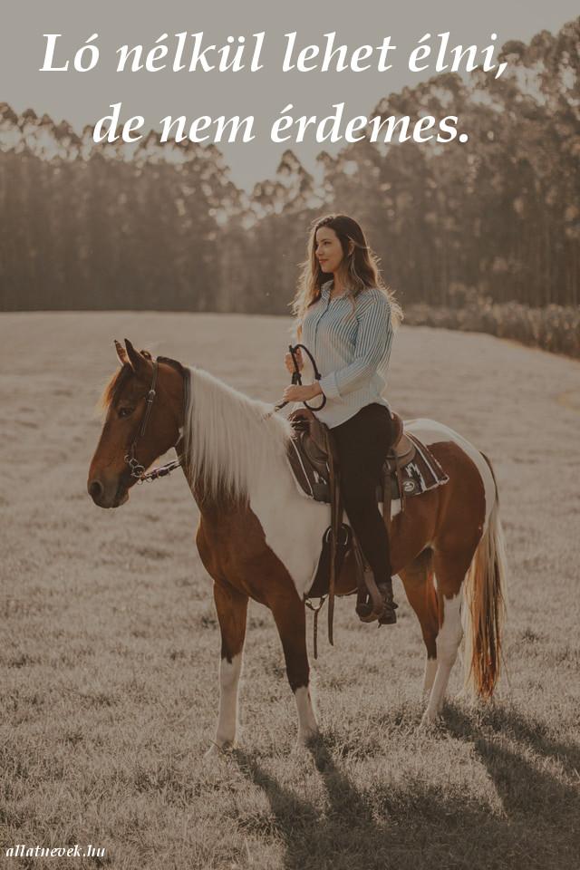 ló idézet, ló nélkül élni