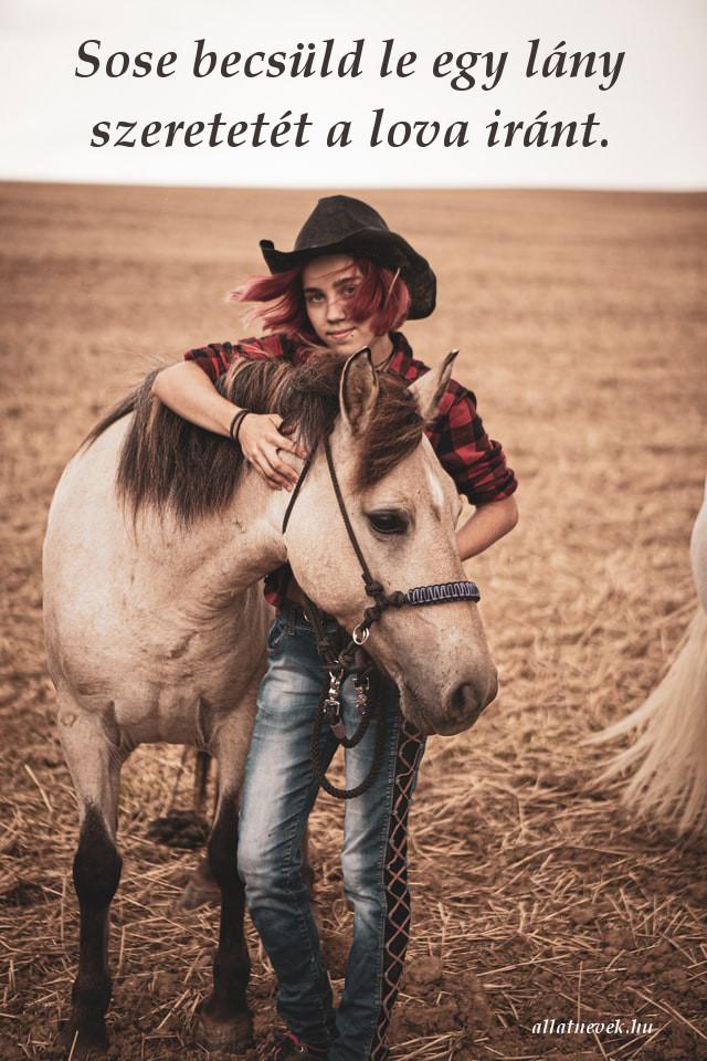 ló iránti szeretet