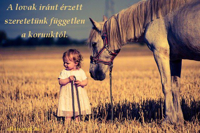 lovak iránti szeretet idézet
