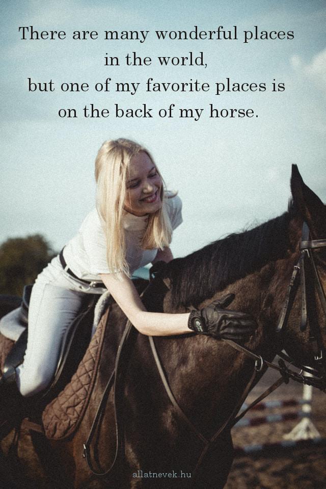 lovas idézet angolul favourite place