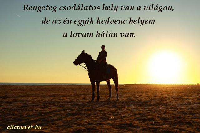 lovas idézet, kedvenc hely