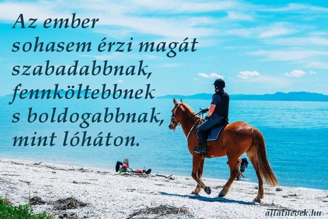 lovas idézet szabadságról, boldogság