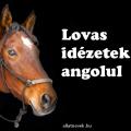 lovas idézetek angolul magyar fordítással