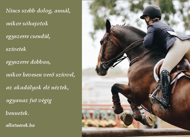 lovas ugratás idézet