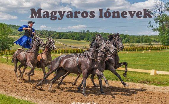 magyaros lónevek